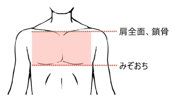 胸毛脱毛の範囲