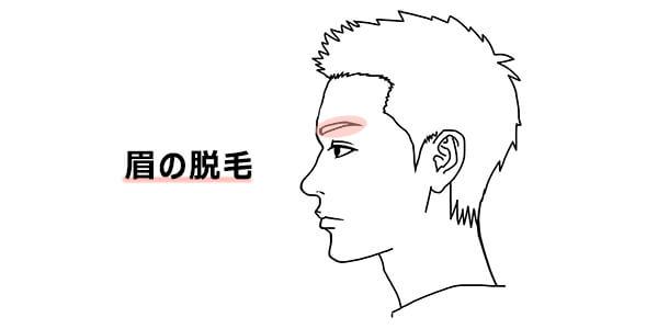 眉毛の脱毛の回数と費用イメージ画像