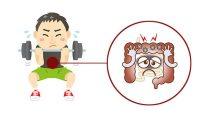 筋トレと腸の深い関係。腸内環境が悪いヤツは成長も遅い